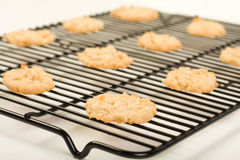Coconut cookies cooling