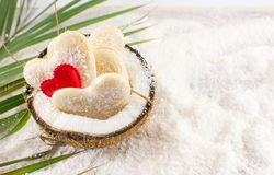 Coconut cookies in a natural bowl. Coconut cookies in a natural fruit made bowl stock photography