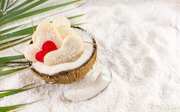 Coconut cookies in a natural bowl. Coconut cookies in a natural fruit made bowl stock images