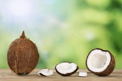 Coconut with copyspace Stock Photos