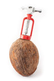 Coconut with a corkscrew Royalty Free Stock Photo