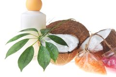 Coconut with cream and bath accessory Stock Photography