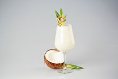 Coconut cream cocktail. In studio Royalty Free Stock Photo