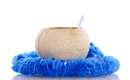 Coconut Cup Royalty Free Stock Photo