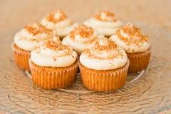 Coconut cupcakes Royalty Free Stock Photos
