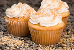 Coconut Cupcakes on Marble Stock Images