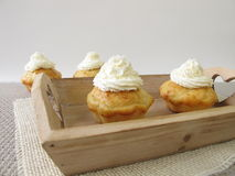 Coconut cupcakes with whipped cream on tray Royalty Free Stock Image