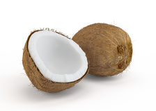 Coconut cut in half. On white background vector illustration