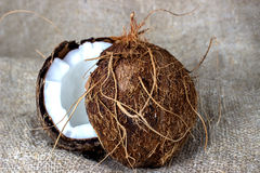 Coconut cut into pieces on burlap Royalty Free Stock Photography