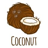 Coconut cutted icon, hand drawn style royalty free illustration