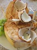 Coconut Dream Stock Images