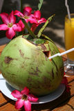 Coconut drink Royalty Free Stock Photos