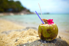 Free Coconut Drink Royalty Free Stock Photos - 39317318