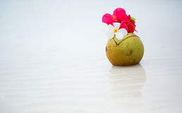 Coconut drink decorated with flowers Stock Photography