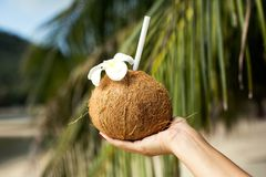 Coconut drink in hand Royalty Free Stock Images
