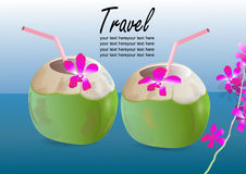 Coconut drink with orchid flower vector illustration , Stock Photos