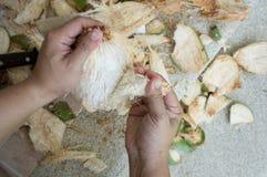 Coconut drink tear apart fruit inside peel concept Stock Photos