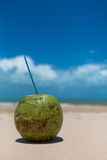 Coconut drink on tropical beach. Coconut on sandy tropical beach Royalty Free Stock Photography