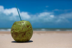 Coconut drink on tropical beach. Coconut on sandy tropical beach Stock Photography