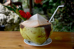 Coconut drink. Tropical coconut drink with decoration Stock Photos