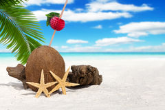 Coconut with Drinking Straw on the Beach Stock Photos