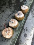 Coconut drinks royalty free stock photography