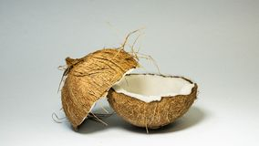 Coconut, exotic fruits, two halves of the fruit in the shell, white background, selective focus, selective light, close-up royalty free stock photos