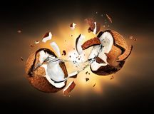 Coconut explodes into pieces in the dark.  Stock Photo