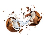 Coconut explodes into pieces on white background Stock Photography