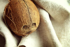 Coconut on the fabric Stock Image