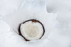 Coconut falling into milk splashes royalty free stock photo