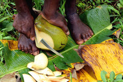 Coconut feet Royalty Free Stock Photos