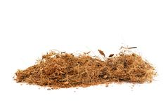 Free Coconut Fiber. Royalty Free Stock Images - 139132059
