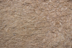Coconut fiber mat Stock Photos
