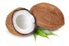 Coconut. Flakes with  in wooden bowl on the white background stock image