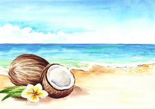Coconut with flower on the Summer tropical beach with golden sand and waves. Hand drawn horizontal watercolor illustration. Coconut with flower on the Summer Royalty Free Stock Image