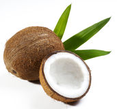 Coconut fruit Royalty Free Stock Photo