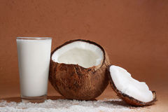 Glass of coco milk with coconut. Coconut fruit with a glass filled with coco milk Stock Images
