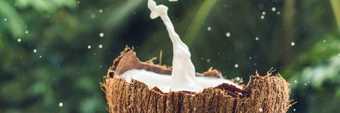 Coconut fruit and milk splash inside it on a background of a palm tree BANNER, long format stock photos