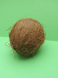 Coconut fruit over light green background Royalty Free Stock Image