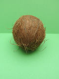 Coconut fruit over light green background Stock Photography