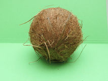 Coconut fruit over light green background Royalty Free Stock Photography