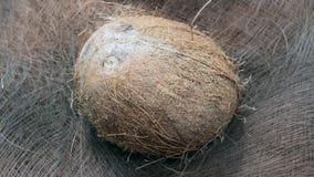 Coconut fruit Royalty Free Stock Photos