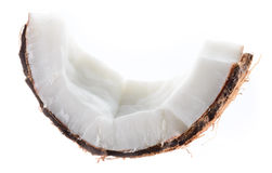 Coconut. Fruit piece isolated on white Royalty Free Stock Image