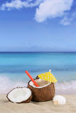 Coconut fruit in summer on the beach and sea Stock Image