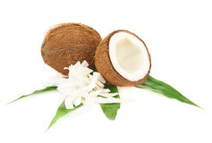 Coconut Fruits Over The Leaves Stock Photography