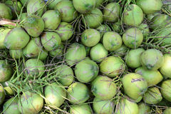 Coconut fruits for sale on street in Bangkok, Thailand Royalty Free Stock Image