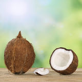 Coconut fruits in summer with copyspace Stock Photo