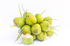 Coconut fruits for water drinking Stock Photos