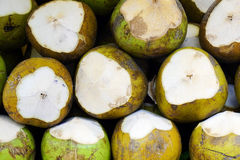 Coconut fuits background Stock Image